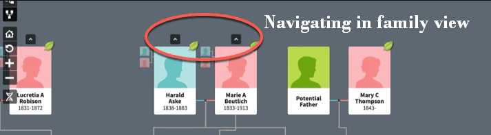 Navigating in family view