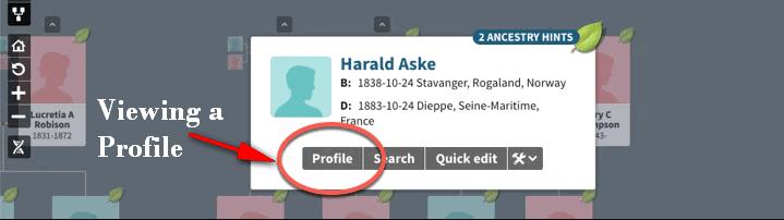 Viewing a profile